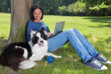 Dog_Trainer_with_Lap_Top_Border_Collie